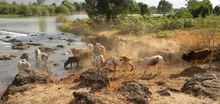 äthiopien reisen