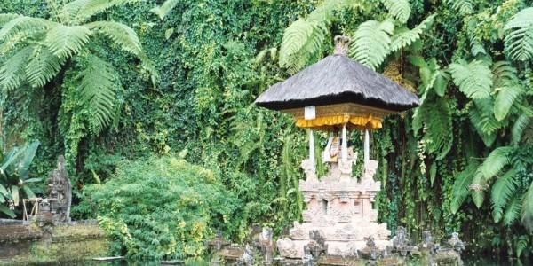 Bali – Reisekontakte.at