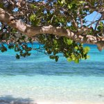 Barbados Reisen