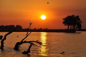 Botswana Reisen
