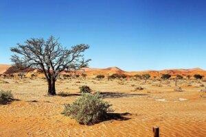 Namibia Autoreise