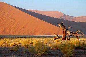 namibia pauschalreisen