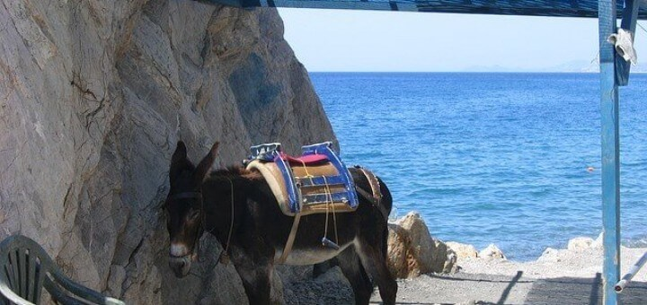 Urlaub auf Kos