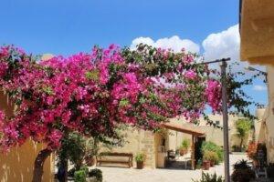 Griechenland - Urlaub für Langzeit