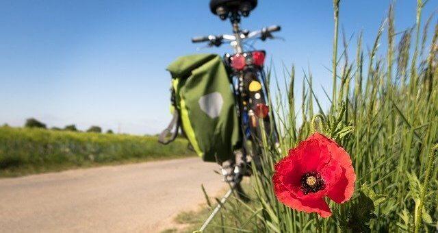 Radreisen in Europa und weltweit