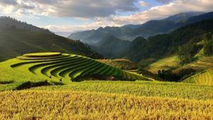 Vietnam Wanderreisen