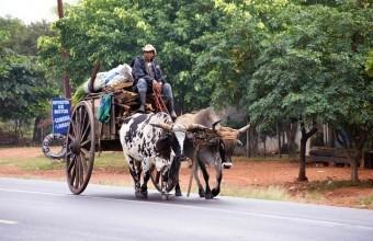 Paraguay Reisen 2018 buchen