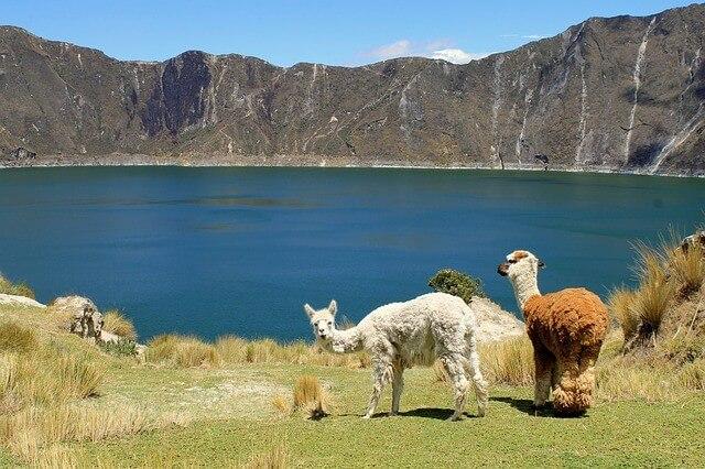 Ecuador Reisen 2019 buchen