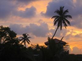 Rundreisen Sri Lanka