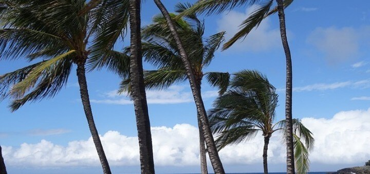 Hawaii Hotels