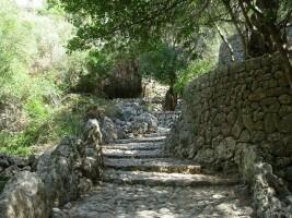 Mallorca Natur und Kultur