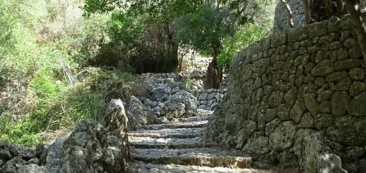 Mallorca Naturreisen