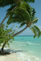 Malediven segeln