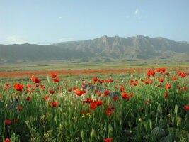 Armenien Reisen
