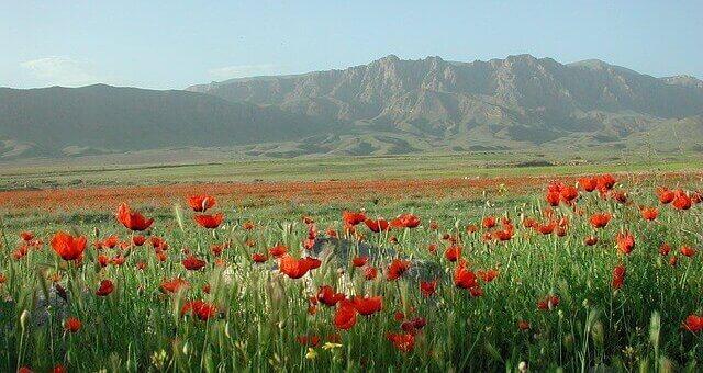 Armenien Reisen, Rundreisen