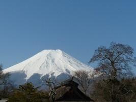 Japan Wanderreisen Fuji