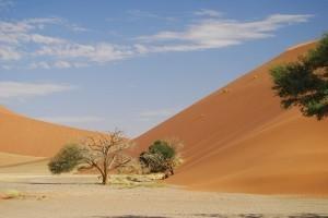 Erlebnisreisen Namibia Sossusvlei