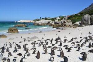 Südafrika Autoreise